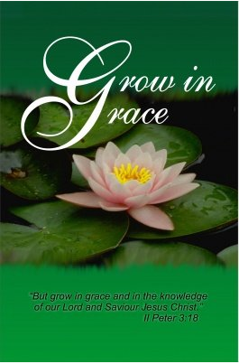 Grow in Grace by Scott hanks Pastor
